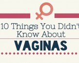 infografia vagina